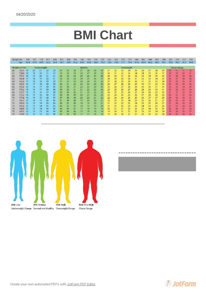 family bmi chart use pdf template