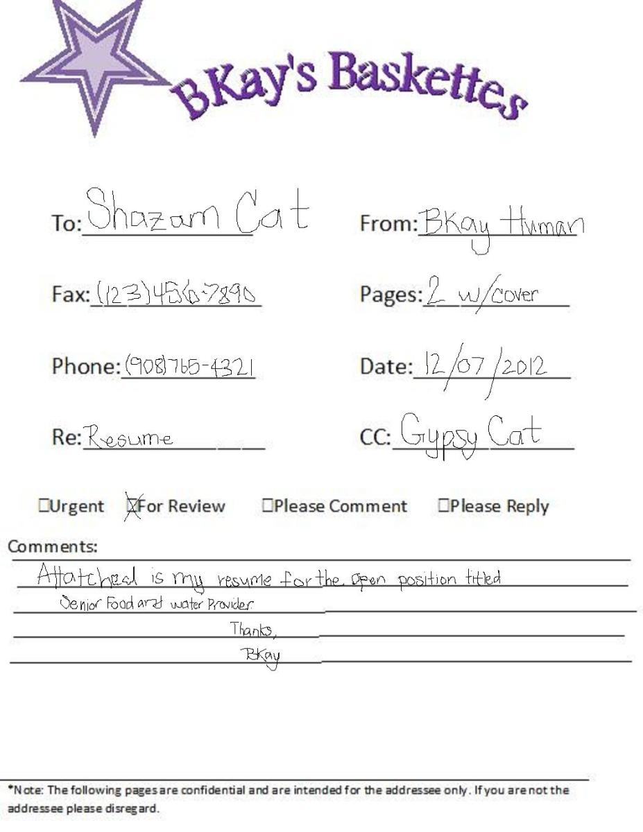 Personal sheet filled by a kid
